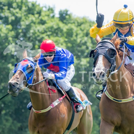 Woolamai Picnic Racing - 17 January 2015