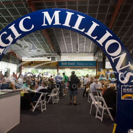 Magic Millions, General_11-01-15, Day Five, Sharon Chapman_009