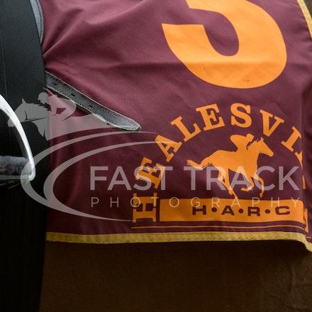 Race 1, Be My Lady_31-01-15, Healesville, Picnics_007