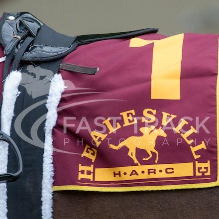 Race 1, Mayfair Mogul, Toby Lake_31-01-15, Healesville, Picnics, WIN_012