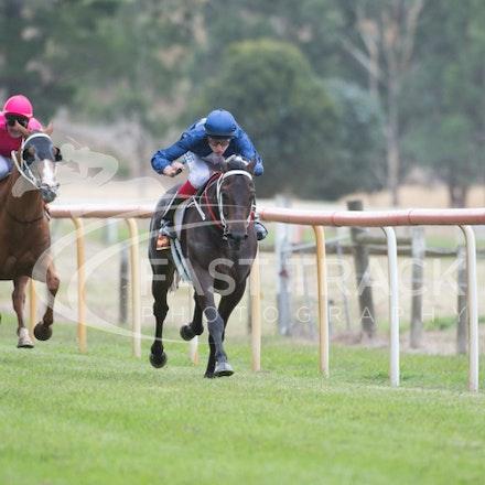 Race 1, Mayfair Mogul, Toby Lake_31-01-15, Healesville, Picnics, WIN_014