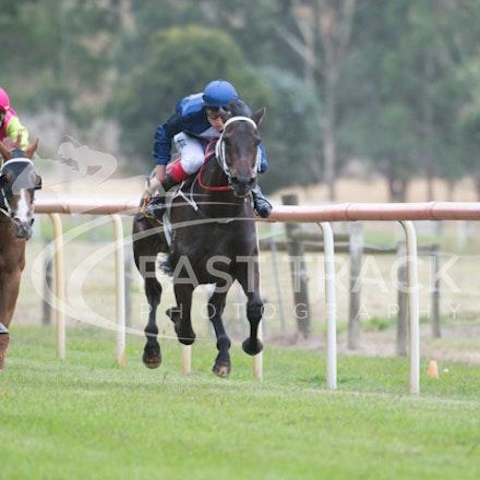 Race 1, Mayfair Mogul, Toby Lake_31-01-15, Healesville, Picnics, WIN_015