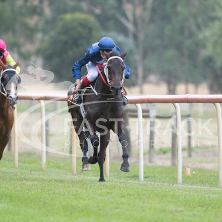 Race 1, Mayfair Mogul, Toby Lake_31-01-15, Healesville, Picnics, WIN_016