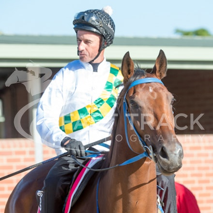 Trial 1, A Time For Julia, Glen Boss_09-02-15, Cranbourne_039