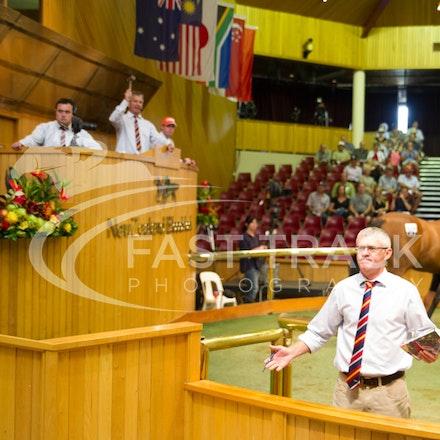 Karaka, Bid Spotters_27-01-15, Day Two Premier, Sharon Chapman_241