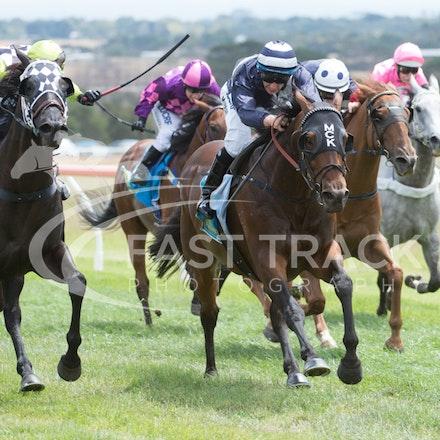 Race 2, Rustana, Matthew Corbisiero_07-02-15, Woolamai, WIN_020