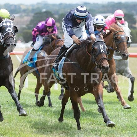 Race 2, Rustana, Matthew Corbisiero_07-02-15, Woolamai, WIN_021
