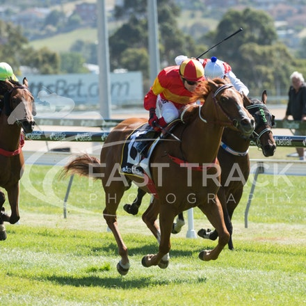 Race 1, Morning Starlet, Dean Yendall_06-02-15, Hobart, WIN_010