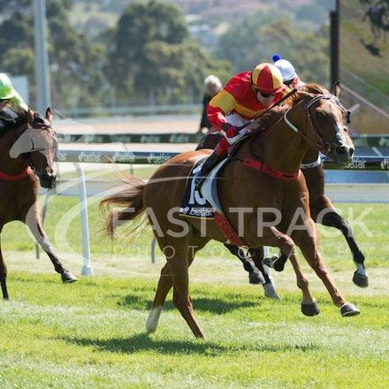Race 1, Morning Starlet, Dean Yendall_06-02-15, Hobart, WIN_011