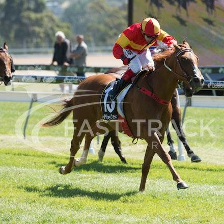 Race 1, Morning Starlet, Dean Yendall_06-02-15, Hobart, WIN_012