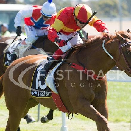 Race 1, Morning Starlet, Dean Yendall_06-02-15, Hobart, WIN_013