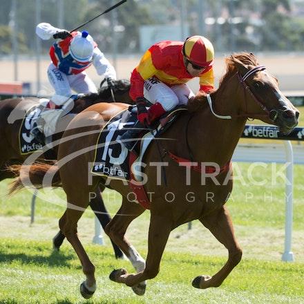 Race 1, Morning Starlet, Dean Yendall_06-02-15, Hobart, WIN_014
