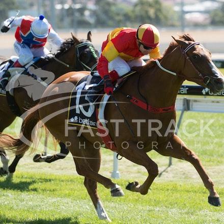 Race 1, Morning Starlet, Dean Yendall_06-02-15, Hobart, WIN_015