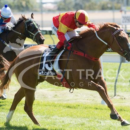 Race 1, Morning Starlet, Dean Yendall_06-02-15, Hobart, WIN_016