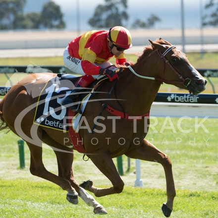 Race 1, Morning Starlet, Dean Yendall_06-02-15, Hobart, WIN_017