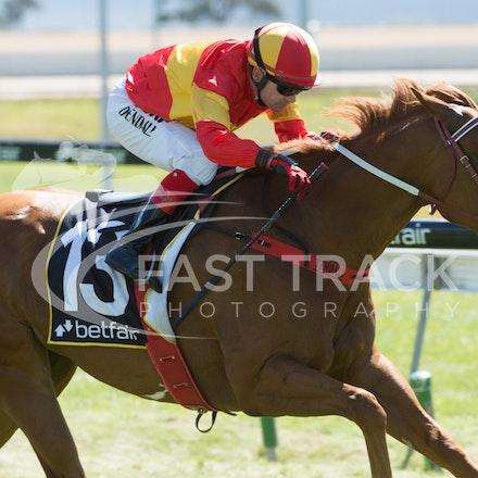 Race 1, Morning Starlet, Dean Yendall_06-02-15, Hobart, WIN_018