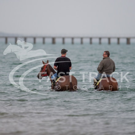 Safety Beach, Of The Brave, Logan McGill & Grande Rosso, Mark Riley_26-02-15_036