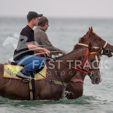 Safety Beach, Of The Brave, Logan McGill & Grande Rosso, Mark Riley_26-02-15_042