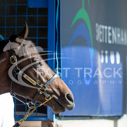 Inglis Melbourne Premier - Day One - 1 March 2015