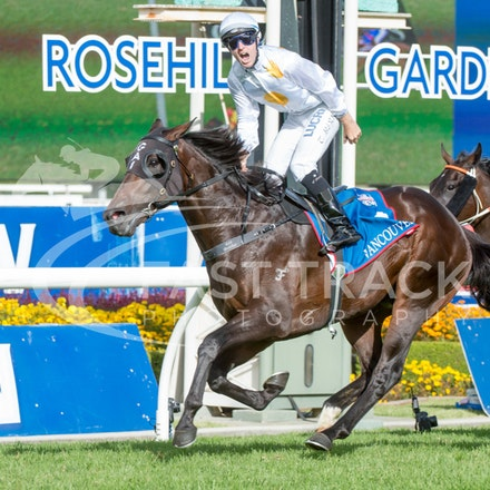 Golden Slipper Day - 21 March 2015 - Rosehill Gardens