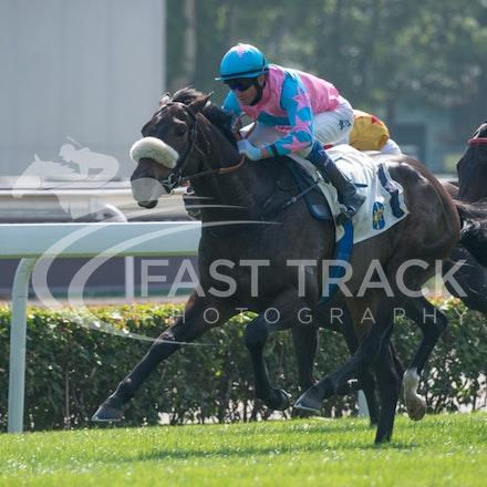Race 2, Got Fly, Douglas Whyte_14-12-14, Sha Tin, WIN_004