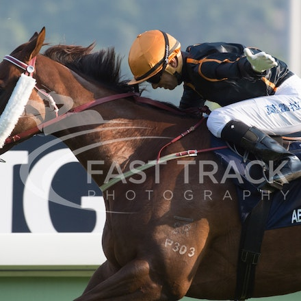 Sha Tin - International Races - 14 December 2014