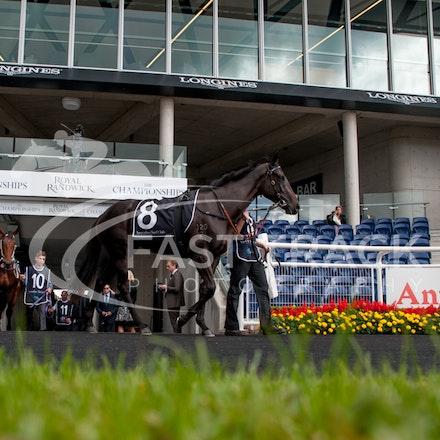 Race 1, Chachapoyas_11-04-15, Royal Randwick_258