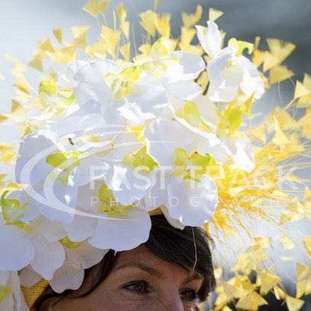 Royal Ascot, Fashion_18-06-15, Royal Ascot_007