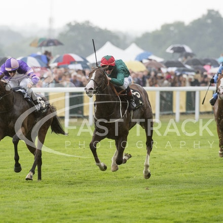 Royal Ascot, Race 1, Suits You, Christian Demuro_20-06-15, Royal Ascot, WIN_054