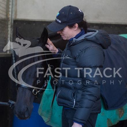Flemington Trackwork, Brazen Beau & Justine Hales_29-05-15_0060