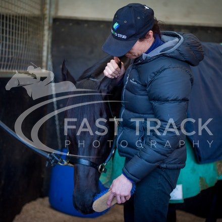 Flemington Trackwork, Brazen Beau & Justine Hales_29-05-15_0064