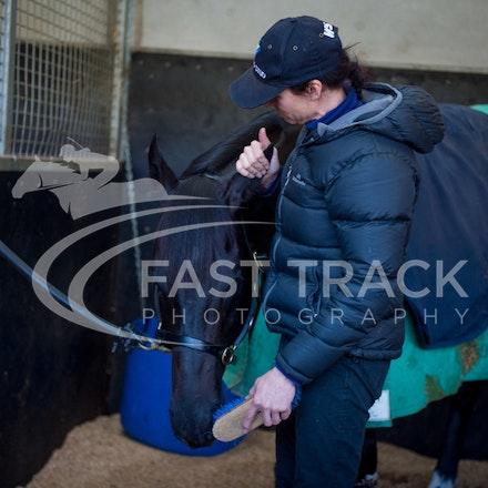 Flemington Trackwork, Brazen Beau & Justine Hales_29-05-15_0066