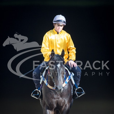 Flemington Trackwork - 29 May 2015