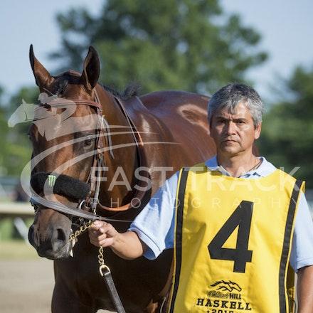 Race 12, American Pharoah_02-08-15, Haskell, Monmouth Park, WIN_0266