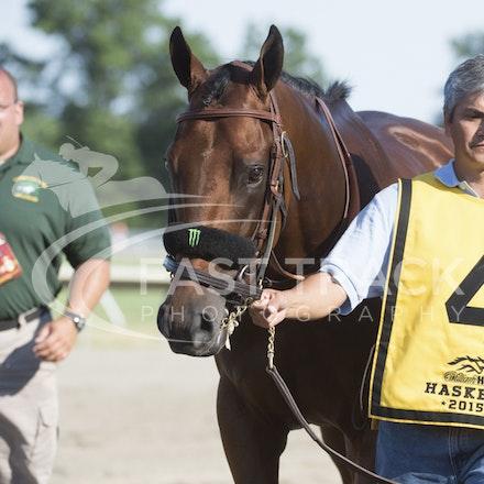 Race 12, American Pharoah_02-08-15, Haskell, Monmouth Park, WIN_0272