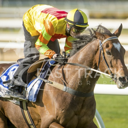 Cranbourne Trials - 21 September 2015