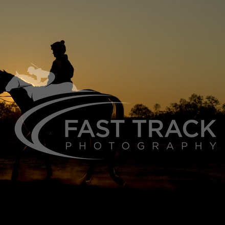 Birdsville Trackwork_04-09-15_001