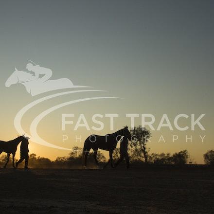 Birdsville Trackwork_04-09-15_018