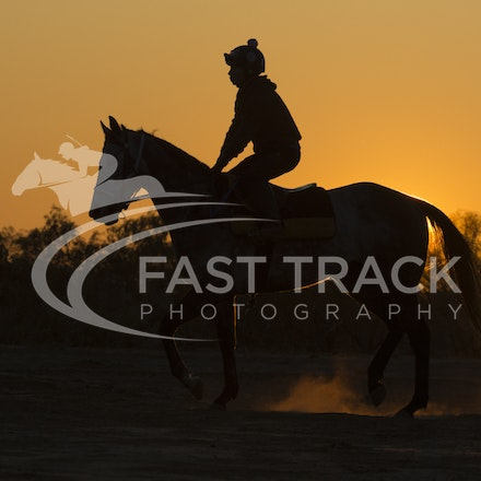 Birdsville Trackwork - 4 September 2015