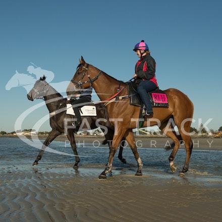 Altona Beach, Buffering and Deadly Shadow_28-10-15_252