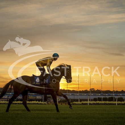 Moonee Valley - Breakfast with the Stars - 20 October 2015