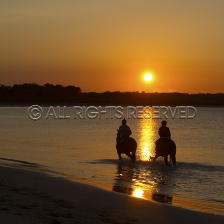 Balnarring Beach, Sunrise, Silhouette_058