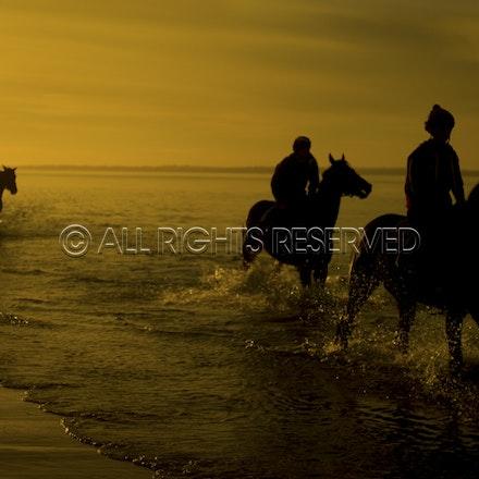 Balnarring Beach, Sunrise, Silhouette_059