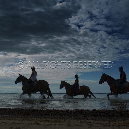 Balnarring Beach, Sunrise, Silhouette_060