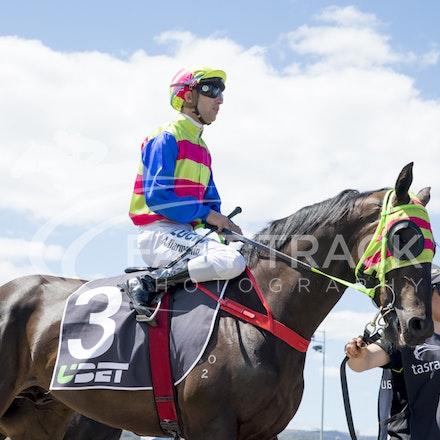 Race 1, Global Squire, Anthony Darmanin_21-02-16, Launceston, WIN_Sharon Chapman_001