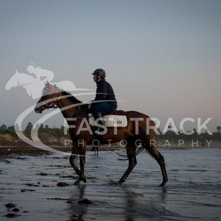 Warrnambool Beach, Darren Weir_04-03-16_0008