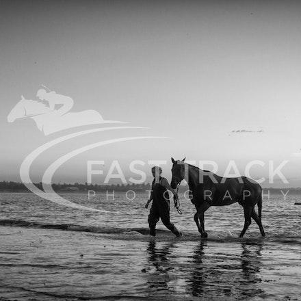 Warrnambool Beach, Darren Weir_04-03-16_0011