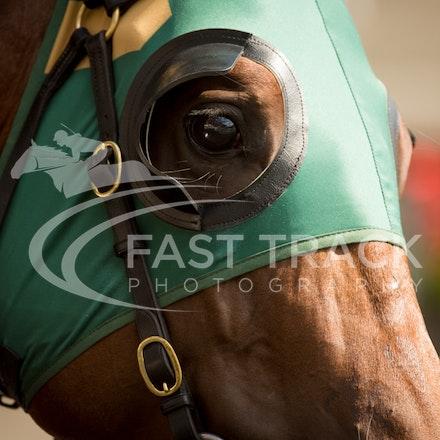 Race 1, Gravitate_09-04-16, Royal Randwick_0026
