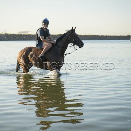 Botany Bay, Audacious Choice_06-04-16, Sharon Chapman_0075