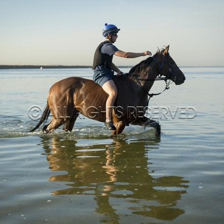 Botany Bay, Audacious Choice_06-04-16, Sharon Chapman_0078